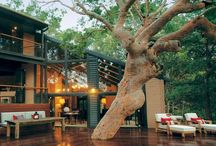 Outdoor Rooms & Spaces / Luscious Outdoors / by Amber Johnson