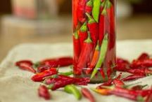 *I Like It Hot!* / The best spicy food recipes from around the world! #spicy #chiles  / by SpicieFoodie