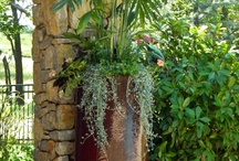 garden:  Containers and how-to's