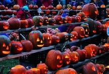 Halloweenies / by Bethany Buccello