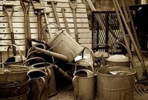 Watering cans and garden metal / by Faire Garden