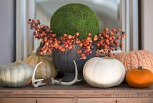 Fall Decorating and Entertaining