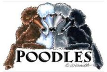 Standard POODLES are Fabulous ! ! ! / I love this breed.❤️❤️ / by Madeline Soprano,Boudreaux