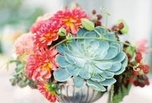 Floral Decor - Blooms
