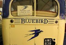 Bluebird Wanderlodge / by Kori Peterson