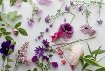 Interiors: Flowers