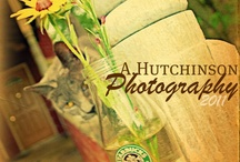 A. Hutchinson Photography - My Photography and Tools / Photography is a gift of mine ... I seem to have an eye.  I enjoy the view the lens captures.