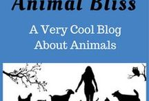 ANIMAL BLISS (.com) BLOG / Animal Bliss is a very cool blog about animals. This is where I share my passion for animals and their welfare.  I feature all animals -- wild & domestic; big & small; furry, feathery & scaly; earth, land & sea.  Stop by and say hello!   http://www.AnimalBliss.com