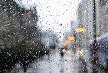 Rainy Day / Rain, water, cozy, moody day