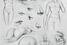 Drawing - Body anatomy