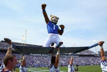 Big Blue Nation / Kentucky pride is hard to hide.