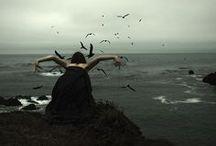 The sea beckons me