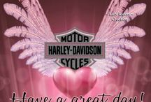 Harley Davidson / by Tracy Cannon