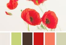 COLOR PALETTE FOR STUFF / by Tirica Stefani