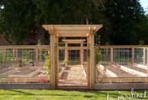 BUILD A GARDEN & COMPOSTER / Next spring project to add on and improve our garden / by ZANE SMITH