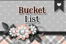 » Bucket List / » Things I Have done, and some I want to do!