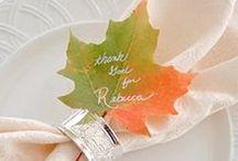 Thanksgiving Decor / by Margaret Slater
