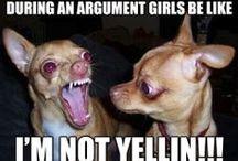 Need a Laugh? / by Erika BrownEyez Hidrogo