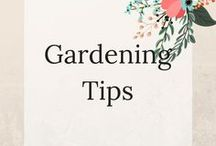 Gardening Tips / Beautiful Garden Ideas and Tips