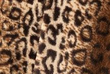 cleo | Follow Your Instinct | Trend / Just a hint or go wild with fun animal prints this season. Let your wild side shine! / by cleo