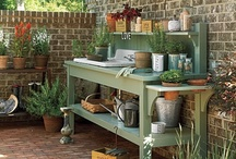 Garden Info & Ideas / useful ideas and inspiration for improving my gardening skills / by Amy Kleine