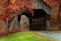 New England / by Janet Griffin