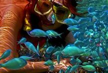 Amphibians Fish Whales Reptiles / by Carol Frey