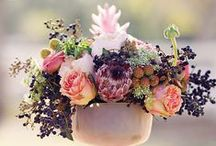 Flowers / Flowers!