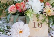 Bridal style shoot ideas / Vineyard, vintage, romance.
