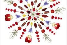 a r t :: n a t u r e / playing with petals, art in nature, nature collections turned into art, mandalas