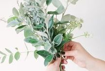 Decorate with Flowers / Bringing the outdoors in with beautiful greenery and blooming buds.