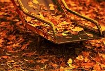 Autumn Love / by Cassandra Winkert