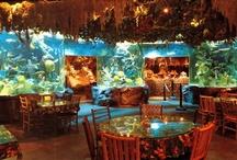Themed Restaurants