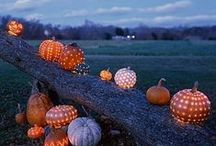 Autumn / pumpkins, leaves, and such / by Carey Higgs