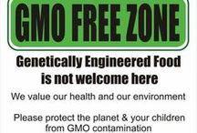 GMO FREE, ORGANIC, REAL FOOD / by Patricia Calesini