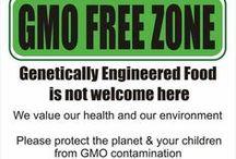 GMO FREE, ORGANIC, REAL FOOD / by Patricia Calesini