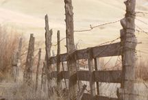 Fences / by Karla Cheyenne