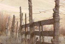 Fences / by Karla Cheyenne
