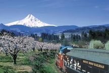 Portland Living / Embracing beautiful Portland, OR and America's beautiful Pacific Northwest.