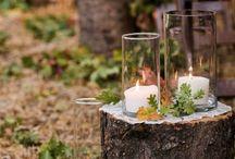 Wald-Hochzeit / Natürlich, romantisch und mitten in der Natur: Eine freie Trauung im Wald!  #hochzeit #freietrauung #wald #heiratenimwald #traulina