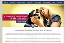 Medical & Veterinarian Web Design