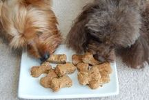Peanut Butter for Dogs Recipes / Recipes for Dogs- some of our biggest fans.