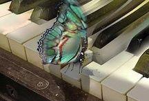 Butterflies / by Joanna Kenny