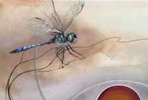 Dragonfly / Dragonflies