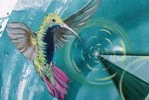 Colubris (Kolibri)