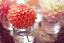 I Love: Flowers / Beautiful flowers and floral arrangements / by Rosalie