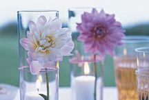 Entertain | Tablescapes / Tips, tricks, and ideas for entertaining, hosting, and celebrating. / by Jeni Bishop