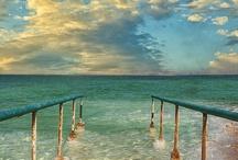 Enjoy The View / by Rebecca Altamirano