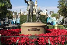 Disneyland / Tips and Info for a Disneyland Vacation