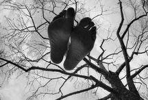 Black & White / by Nicole Szymanski